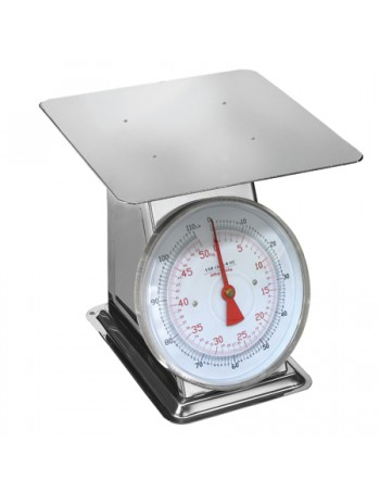 Stainless Steel Scale - 110 lbs